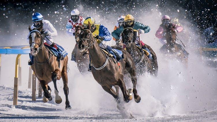endspurt-zielgerade-pferderennen