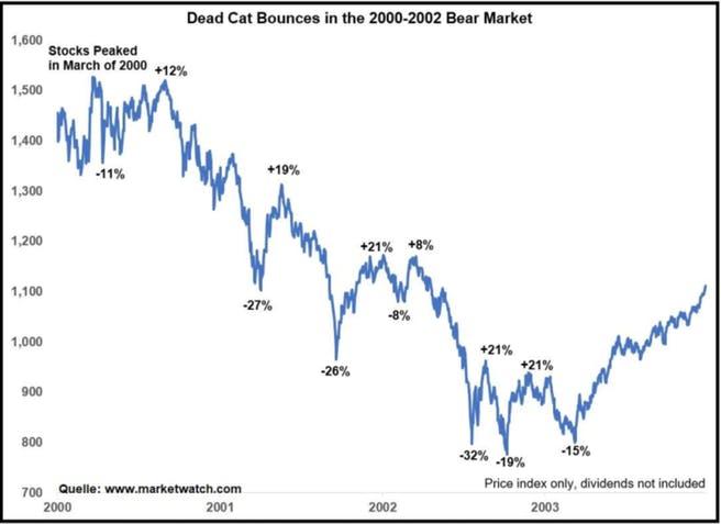 dotcom-blase-aktienmarkt-gegenbewegungen-im-baerenmarkt